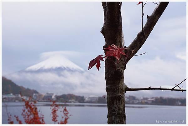 河口湖-清晨-32.JPG