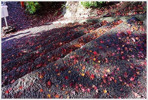 新倉山淺間公園-5-紅葉階梯.JPG