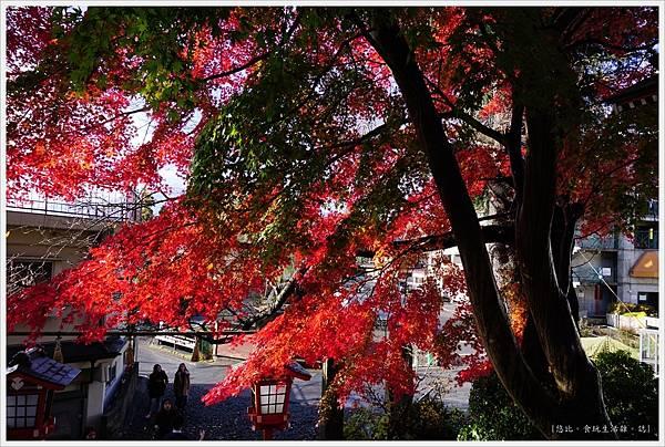 新倉山淺間公園-6-入口.JPG