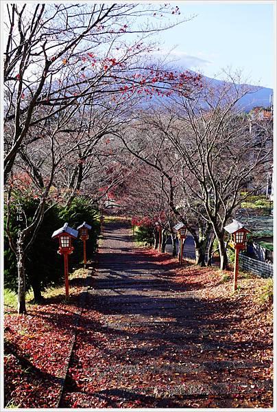 新倉山淺間公園-12-表參道.JPG