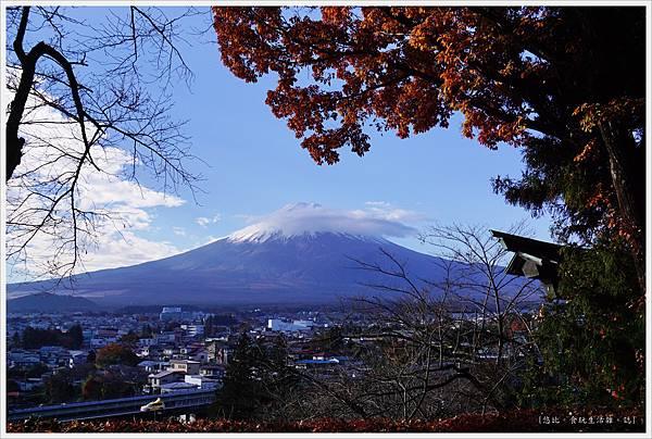 新倉山淺間公園-14-富士山.JPG