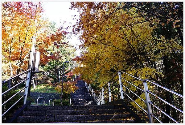 新倉山淺間公園-23-1-階梯.JPG