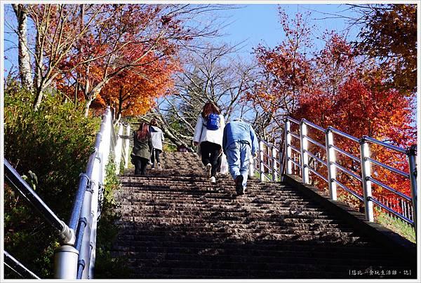 新倉山淺間公園-25-階梯.JPG
