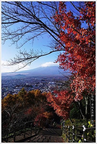 新倉山淺間公園-29-階梯富士山.JPG