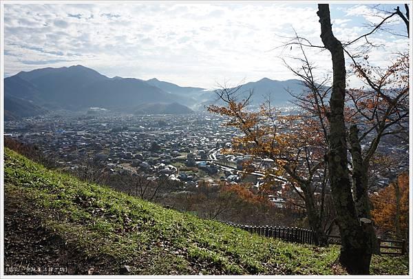 新倉山淺間公園-35.JPG