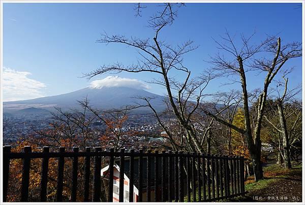 新倉山淺間公園-36-富士山.JPG