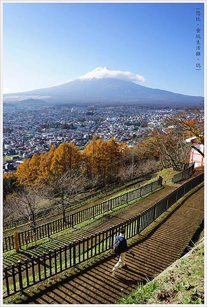 新倉山淺間公園-69.JPG