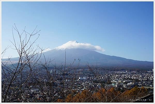 新倉山淺間公園-73.JPG