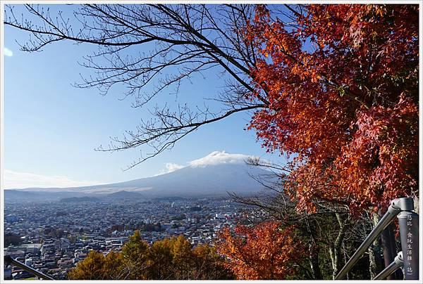 新倉山淺間公園-78-富士山.JPG