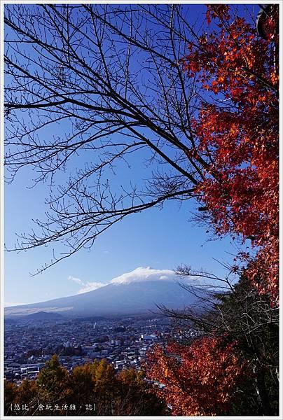 新倉山淺間公園-79-富士山.JPG