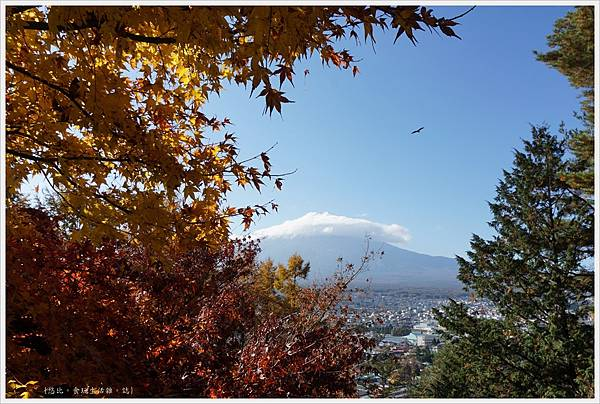 新倉山淺間公園-80-富士山.JPG