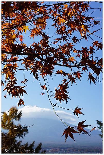 新倉山淺間公園-82-富士山.JPG