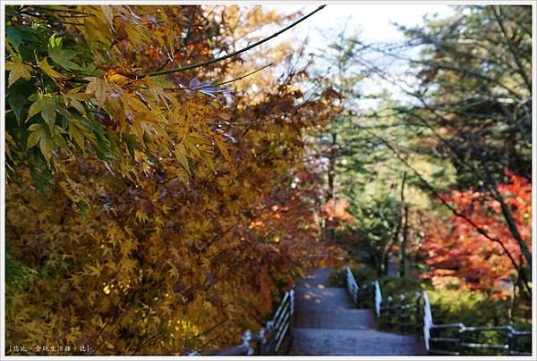 新倉山淺間公園-84-階梯.JPG