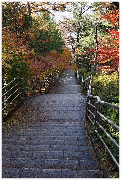 新倉山淺間公園-85-階梯.JPG