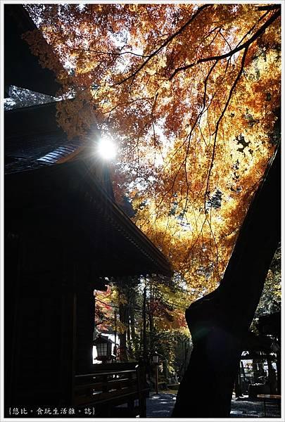 新倉山淺間公園-95-新倉富士淺間神社.JPG