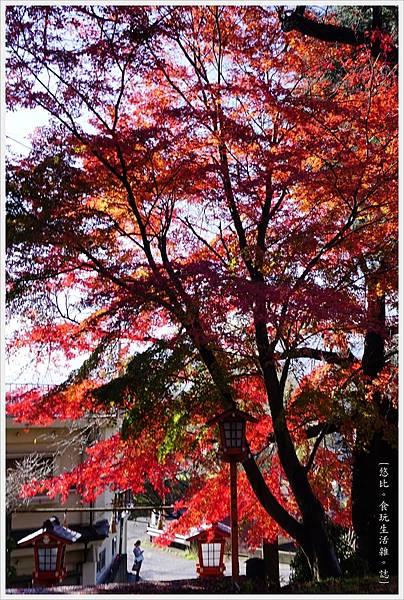 新倉山淺間公園-108-新倉富士淺間神社.JPG