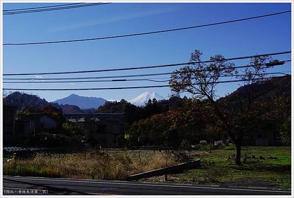 富士登山電車-8-富士山.JPG