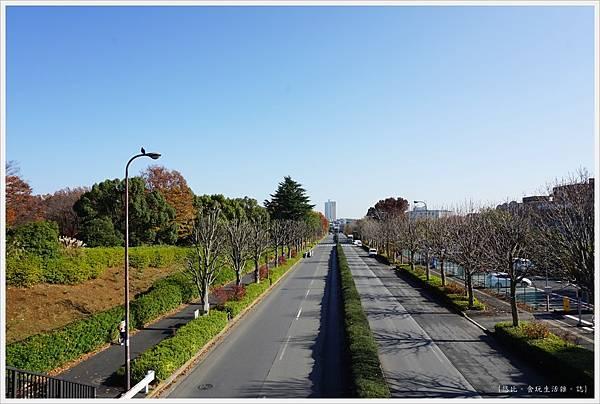昭和紀念公園-3.JPG