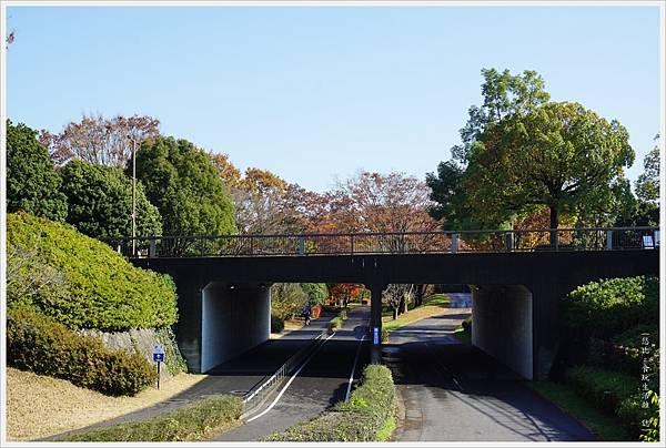 昭和紀念公園-8-自行車道.JPG