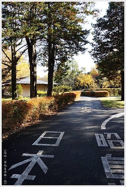 昭和紀念公園-15-自行車道.JPG