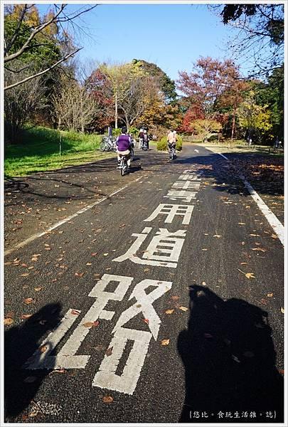 昭和紀念公園-20-自行車專用道.JPG
