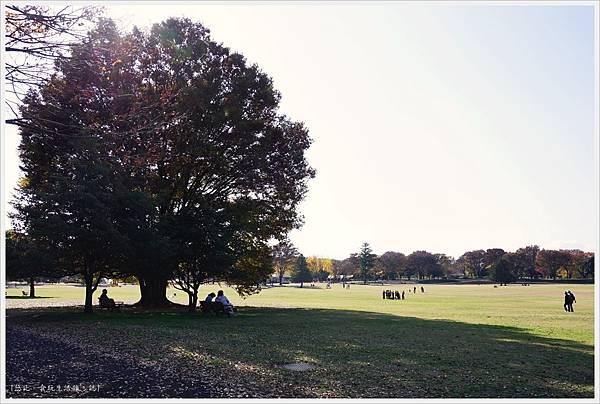 昭和紀念公園-21-1-大眾草原.JPG