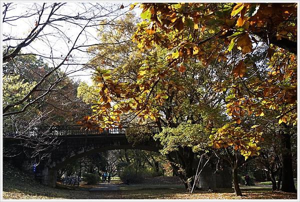 昭和紀念公園-28-石橋.JPG