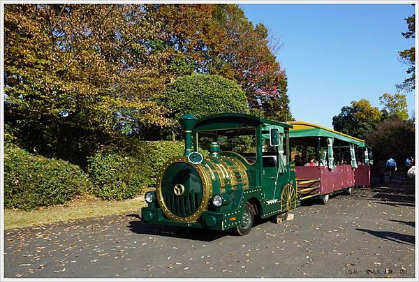 昭和紀念公園-30-遊園小火車.JPG