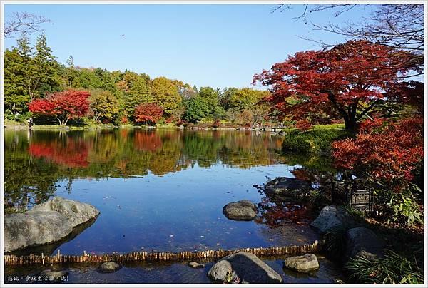 昭和紀念公園-40-日本庭園.JPG