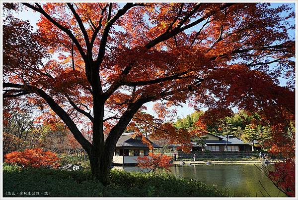 昭和紀念公園-42-日本庭園.JPG