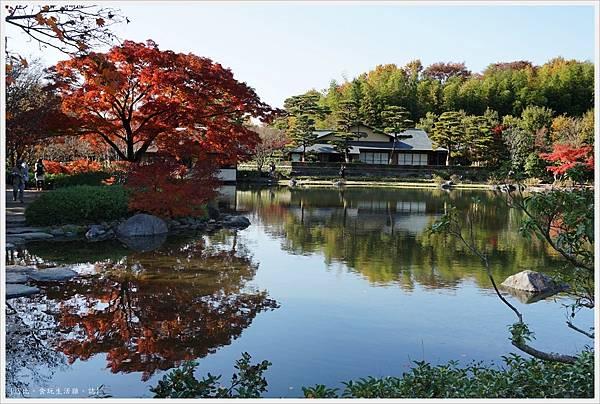 昭和紀念公園-44-日本庭園.JPG