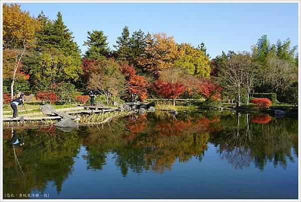 昭和紀念公園-55-日本庭園-龜島.JPG