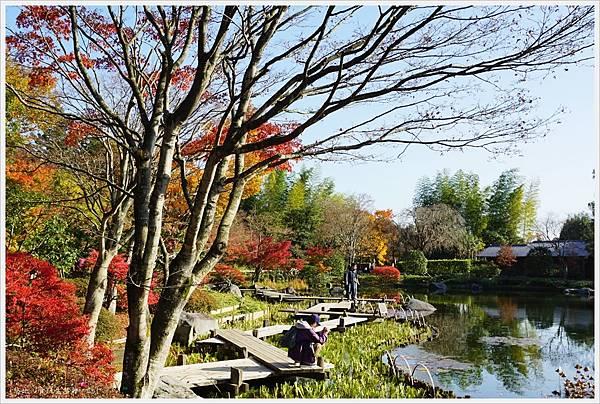 昭和紀念公園-57-日本庭園.JPG