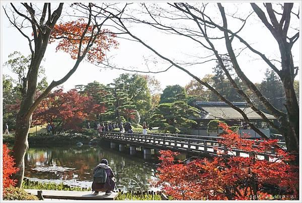 昭和紀念公園-58-日本庭園.JPG