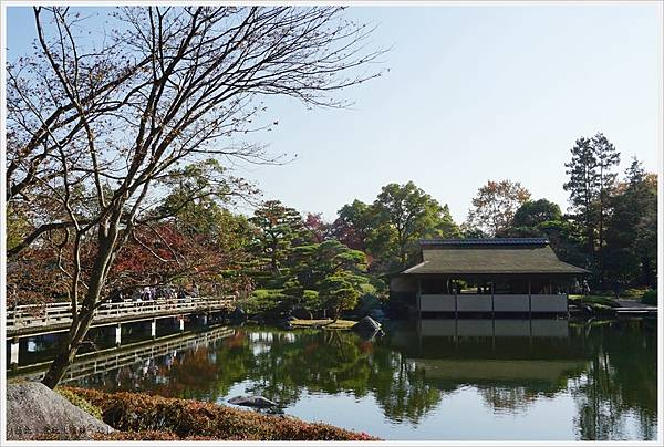 昭和紀念公園-60-日本庭園-昌陽.JPG