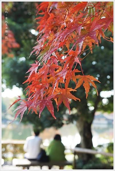 昭和紀念公園-61-日本庭園.JPG