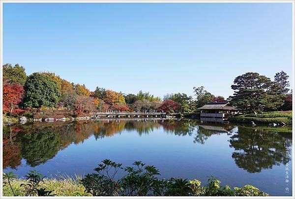 昭和紀念公園-65-日本庭園.JPG