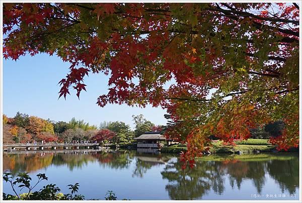 昭和紀念公園-66-日本庭園.JPG