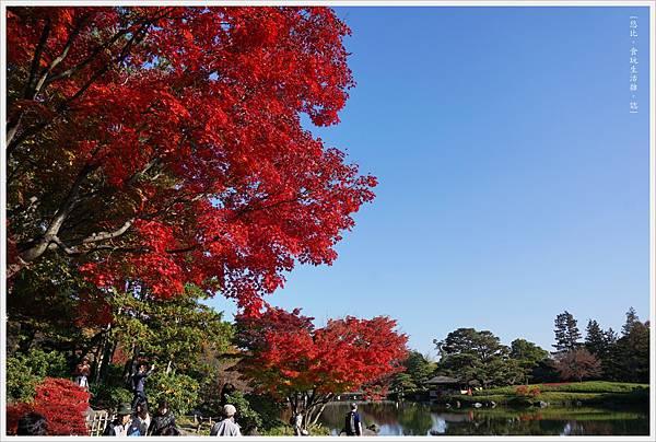 昭和紀念公園-69-日本庭園.JPG
