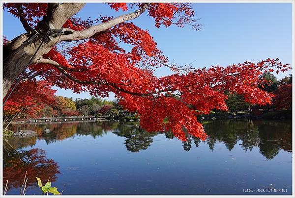 昭和紀念公園-70-日本庭園.JPG