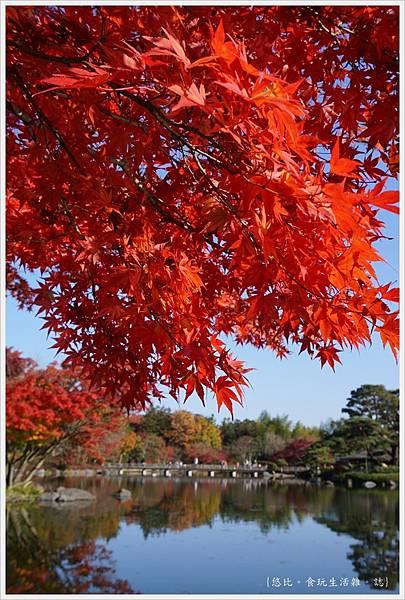 昭和紀念公園-73-日本庭園.JPG