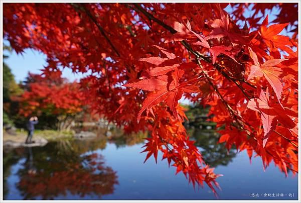 昭和紀念公園-72-日本庭園.JPG