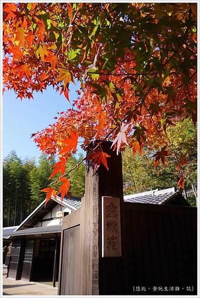 昭和紀念公園-74-日本庭園.-盆栽苑.JPG