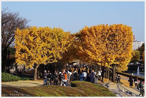 昭和紀念公園-99-噴水池.JPG