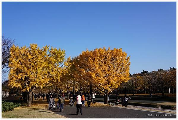 昭和紀念公園-100.JPG