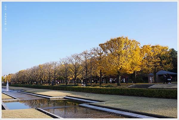 昭和紀念公園-102.JPG