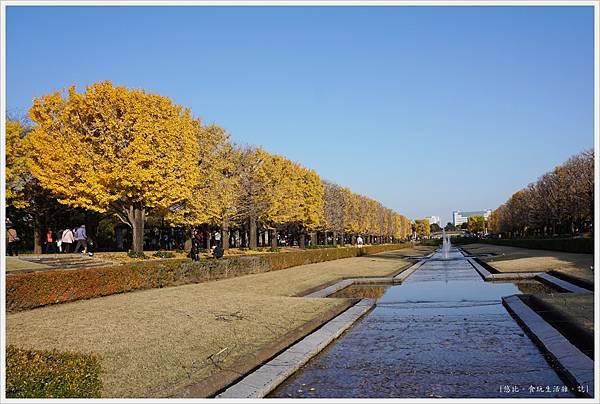 昭和紀念公園-105.JPG