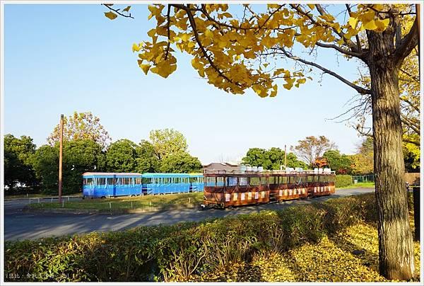 昭和紀念公園-119-銀杏.JPG