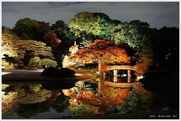 六義園-夜楓-14.JPG