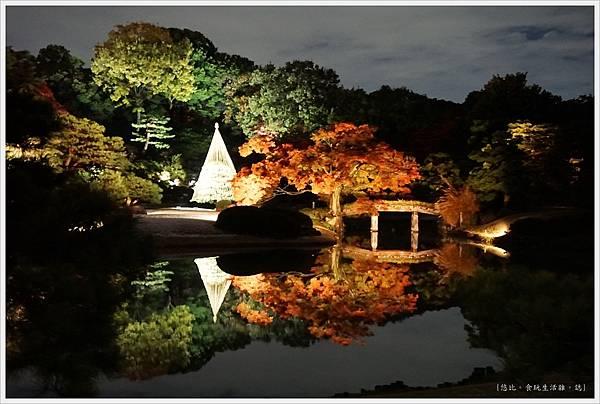 六義園-夜楓-15.JPG